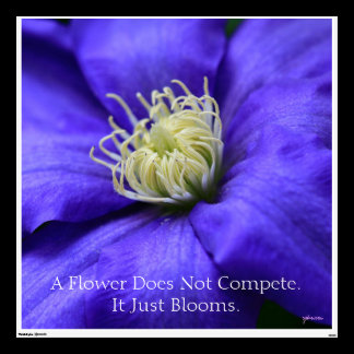 A Flower Does Not Compete Quote Wall Decal