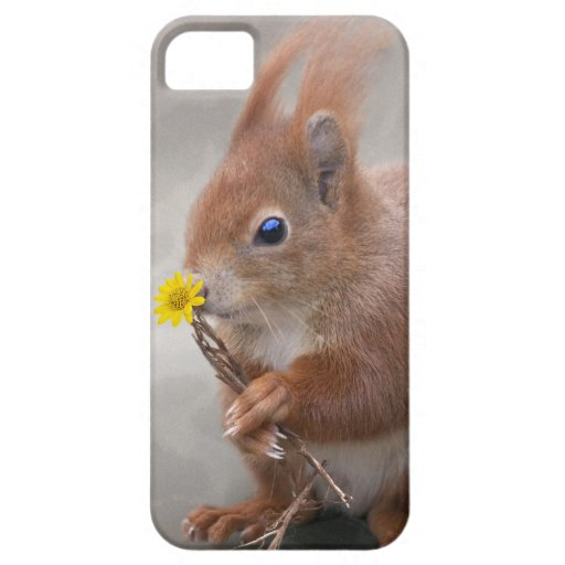 A Flower for You iPhone 5 Case-Mate Case
