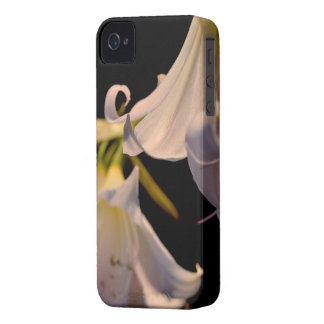 A flower lovers' case iPhone 4 case
