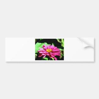 A Flower To Brighten Your Day Bumper Sticker
