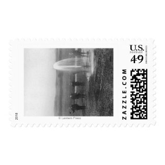 A Flowing Well in the Judith BasinMontana Postage Stamp