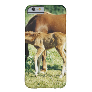 A foal and a horse in a pasture. barely there iPhone 6 case