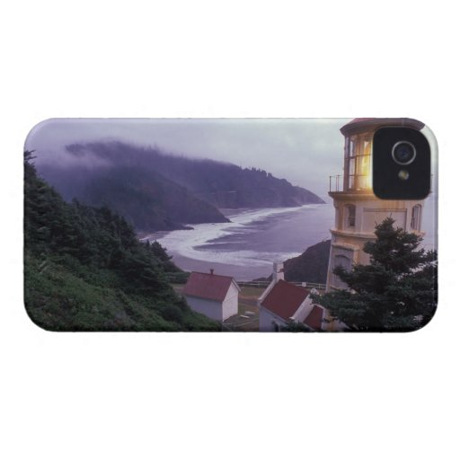 A foggy day on the Oregon coast at the Heceta Blackberry Bold Cases