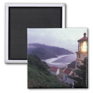 A foggy day on the Oregon coast at the Heceta Magnet