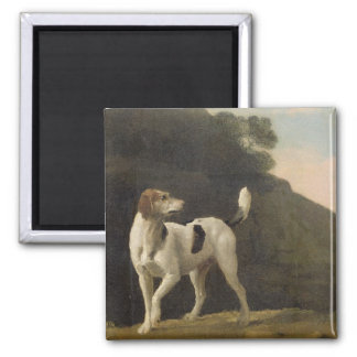 A Foxhound, c.1760 (oil on paper laid on board) 2 Inch Square Magnet