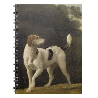 A Foxhound, c.1760 (oil on paper laid on board) Notebook