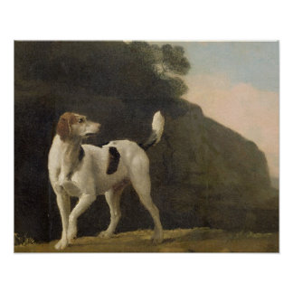 A Foxhound, c.1760 (oil on paper laid on board) Poster