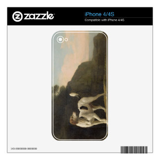 A Foxhound, c.1760 (oil on paper laid on board) Decal For iPhone 4S
