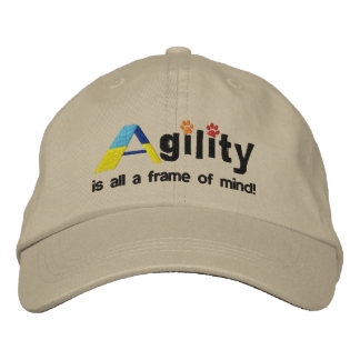 A-Frame of Mind Embroidered Hat