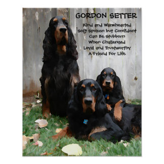 """""""A Friend For Life"""" Gordon Setter Painting Poster"""