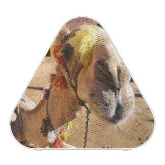 A friendly camel awaits its next rider, Cairo, Bluetooth Speaker
