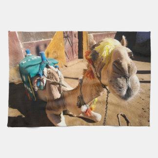 A friendly camel awaits its next rider, Cairo, Hand Towels