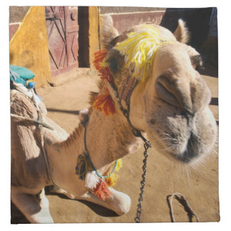 A friendly camel awaits its next rider, Cairo, Napkin