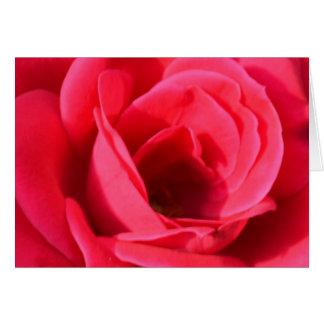 A Friend's Rose Card
