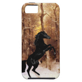 A friesian in winter snow iPhone 5 cover