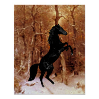 A friesian in winter snow poster