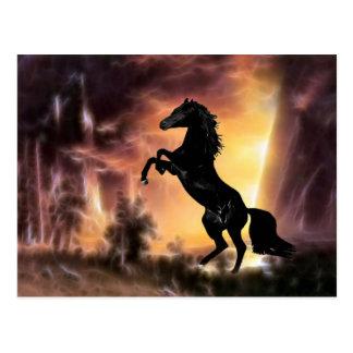 A Friesian Stallion horse rearing Postcard