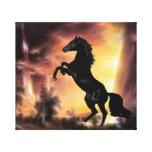A friesian stallion rearing canvas print