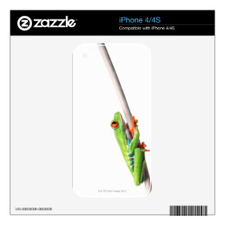 A frog hanging on decals for iPhone 4S