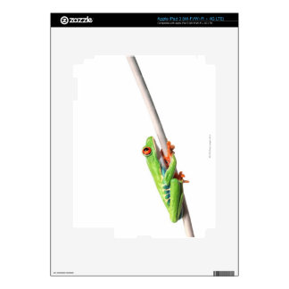A frog hanging on iPad 3 decals