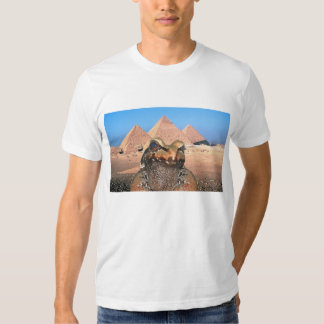 A Frog & Pyrimids In Egypt Shirt