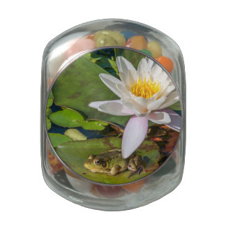 A frog under a flower of water lily glass candy jars