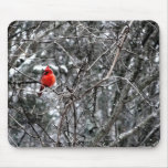 A Frosty Night Mouse Pad