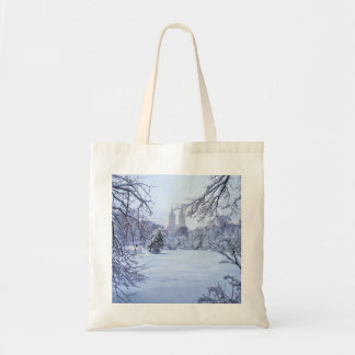 A Frozen Pond In Central Park Tote Bag
