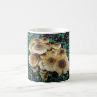 A  Funky fungi mug to go with breakfast