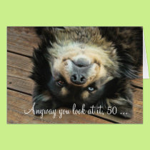 A Funny Happy 50th Birthday Card With a Cute Dog
