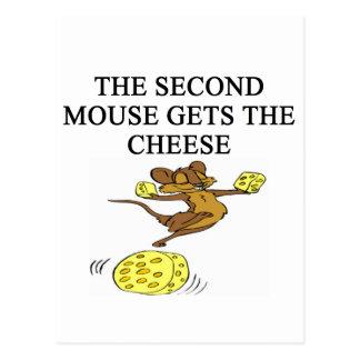 a funny proverb twist postcard
