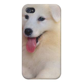 A furry friend for you iPhone 4 cases