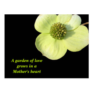 A Garden of Love Dogwood Postcards
