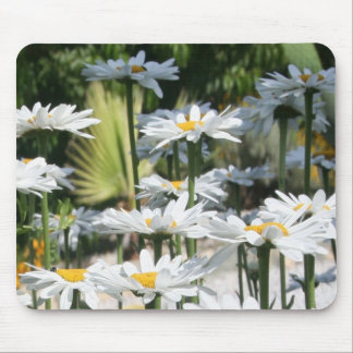 A Garden of White Daisy Flowers Mouse Pad
