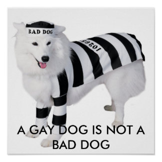 A GAY DOG IS NOT A BAD DOG POSTER