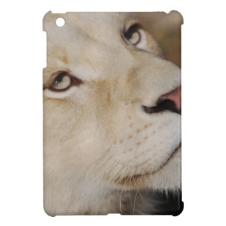 A gentle lion cover for the iPad mini