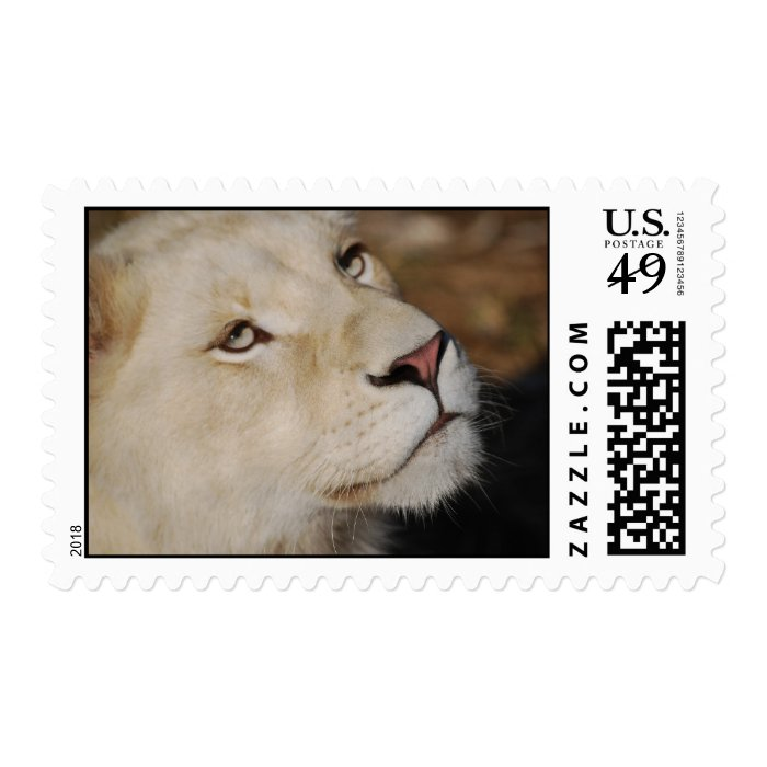 A gentle lion postage