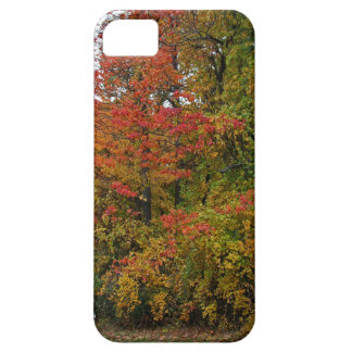 A Gentle Wind in Wildwood iPhone SE/5/5s Case