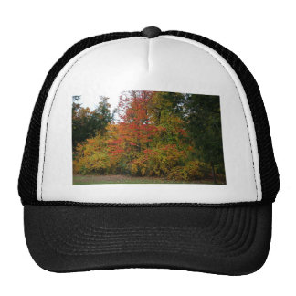 A Gentle Wind in Wildwood Trucker Hat