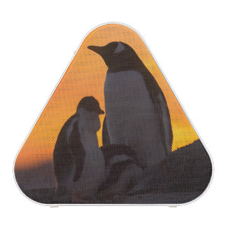A gentoo penguin adult and chick are silhouetted bluetooth speaker