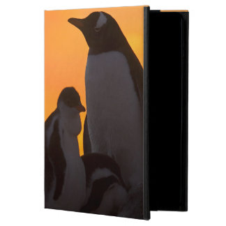 A gentoo penguin adult and chick are silhouetted cover for iPad air