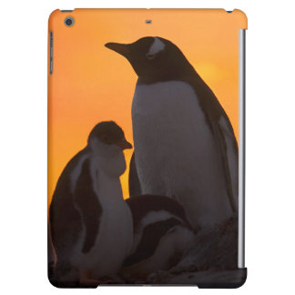 A gentoo penguin adult and chick are silhouetted iPad air cover