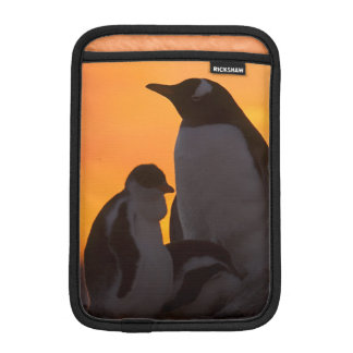 A gentoo penguin adult and chick are silhouetted sleeve for iPad mini