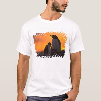 A gentoo penguin adult and chick are silhouetted T-Shirt