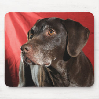 A German Shorthaired Pointer Dog Mouse Pad