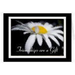 A Gift of Friendship Daisy Cards