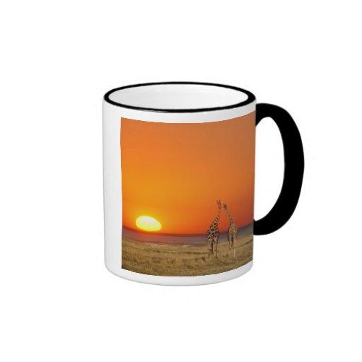 A Giraffe couple walks into the sunset, in Ringer Coffee Mug