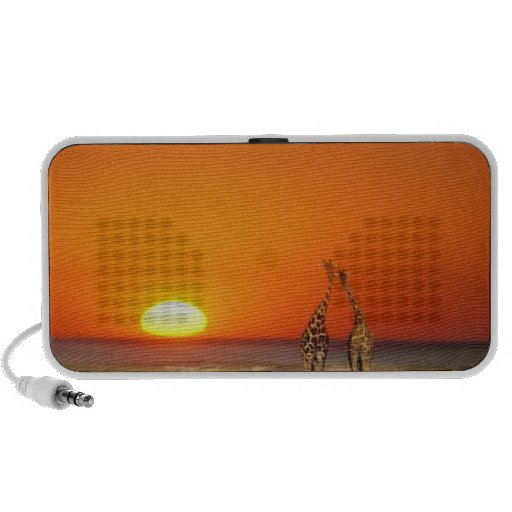 A Giraffe couple walks into the sunset, in Speakers