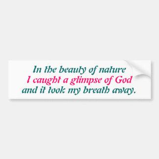 A glimpse of God Bumper Sticker