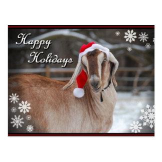 """A Goaty Holiday"" Photo Card"